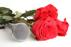 Red roses and a microphone Stock Image