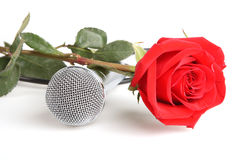 Red roses and a microphone. Red roses and microphone on a white background Royalty Free Stock Photo