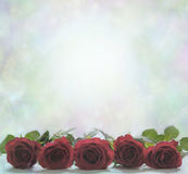 Red roses on a misty bokeh background. Five red rose heads in a line with a misty bokeh pale green background Royalty Free Stock Image