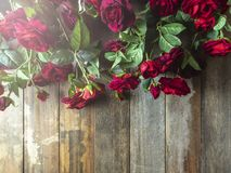Red roses on wooden background. copy space royalty free stock photo