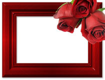 Red Roses On A Red Framework For Photos. Stock Photo