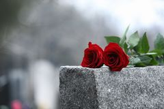Free Red Roses On Grey Granite Tombstone. Funeral Ceremony Stock Photos - 168059153