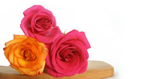 Red roses and orange rose on wooden table Stock Photos