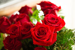 Red roses over valentines day Stock Photos