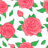 Red Roses over white background. Seamless elegant vintage floral Royalty Free Stock Photography