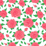 Red Roses over white background. Seamless elegant vintage floral Stock Photo