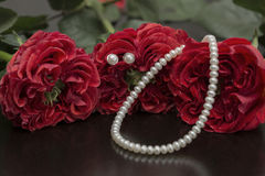 Red roses and pearls Royalty Free Stock Image