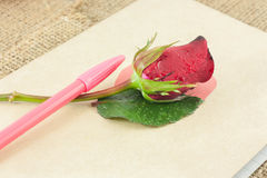 Red roses and pen are placed on old book. Royalty Free Stock Photos