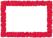 Red Roses petals frame Stock Photos