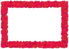 Red Roses petals frame Stock Photos