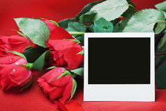 Red roses and photo frame a congratulatory text Stock Photography