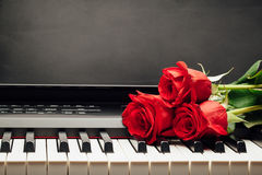 Red roses on piano keys. With copy-space Royalty Free Stock Image