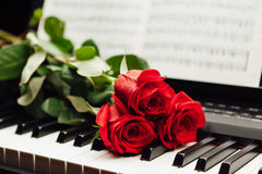 Red roses on piano keys and music book. Closeup view royalty free stock image