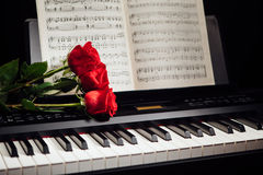 Red roses on piano keys and music book. Closeup view Stock Photos