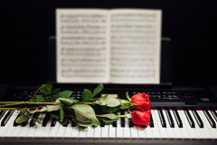 Red roses on piano keys and music book. Closeup view Stock Photography