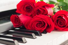 Red roses piano keys romantic background. Royalty Free Stock Photo