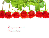 Red roses postcard or background border Royalty Free Stock Image