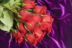 Red Roses on Purple Velvet Stock Photo