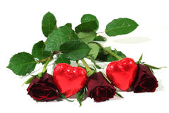Red roses with red hearts. On white background royalty free stock images