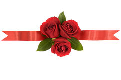 Red roses ribbon banner border straight horizontal. Red roses ribbon banner border horizontal royalty free stock image