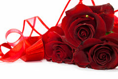 Red roses with ribbons. Red roses isolated on white background with red ribbons around it Royalty Free Stock Photography