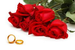 Red roses and rings isolated. On the white background Stock Photos