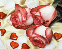 Red roses on satin with hearts Stock Image