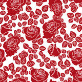 Red roses seamless pattern. Red roses on white background, hand drawing bicolour seamless vector pattern Stock Photo