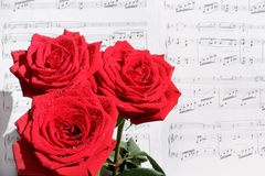 Red Roses and Sheet Music. Red roses in dewdrops before the sheet music on a sunny day Stock Images