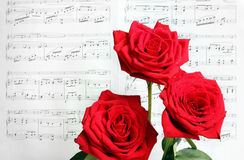 Red Roses and Sheet Music. Red roses in dewdrops before the sheet music on a sunny day Royalty Free Stock Image
