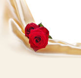 Red roses on silk background Royalty Free Stock Image
