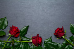 Red roses on slate background. With space for text Stock Photos