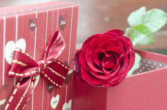 Red roses for someone you love. In the Valentine season Royalty Free Stock Photography