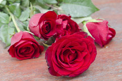 Red roses for someone you love. In the Valentine season Royalty Free Stock Images