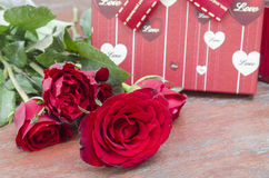 Red roses for someone you love Stock Photography