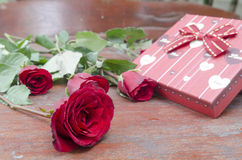 Red roses for someone you love. In the Valentine season Stock Image