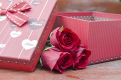 Red roses for someone you love. In the Valentine season Stock Photography