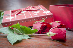 Red roses for someone you love. In the Valentine season Royalty Free Stock Photos
