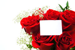 Red roses with tag Stock Photo