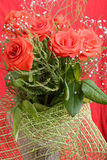 Red roses Valentine background Stock Photo