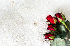 Red roses for Valentine's Day on paper Stock Image