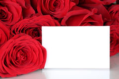 Red roses on Valentine's or mothers day with empty card and copy. Space for your own text Stock Photos