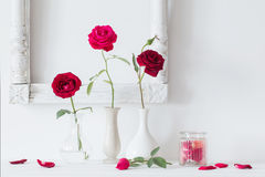 Red roses  in  vase on background white wall Royalty Free Stock Photos