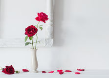 Red roses  in  vase on background white wall Stock Photos
