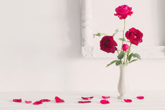 Red roses  in  vase on background white wall Stock Photography