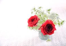 Red roses in vase 3 Stock Photos