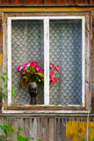 Red roses in a vase standing on a window sill. Stock Photos