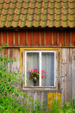 Red roses in a vase standing on a window sill. Stock Images
