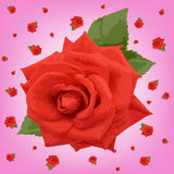 Red roses  vector Royalty Free Stock Image