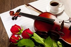 Red roses and a violin Royalty Free Stock Image